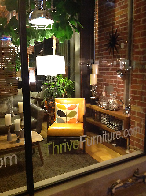 Showroom_Window_Thrive